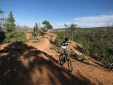 Thunder Mountain Trail