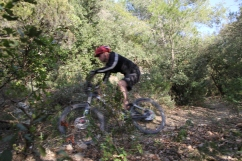 Zippy Collserola Trails